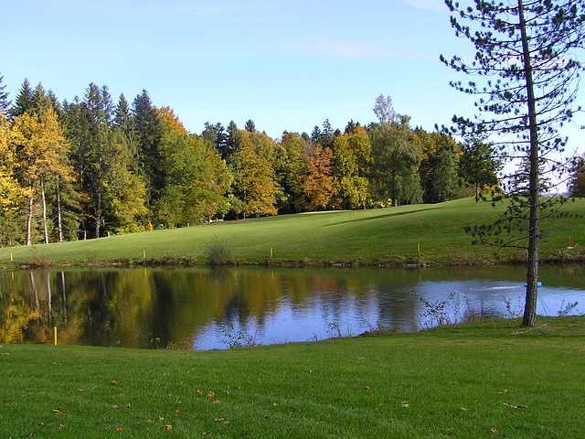 golf-rules-pond-02